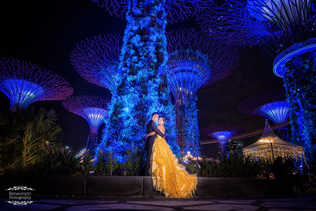 Unique Garden By The Bay Award Singapore Prewedding Intended Design Ideas