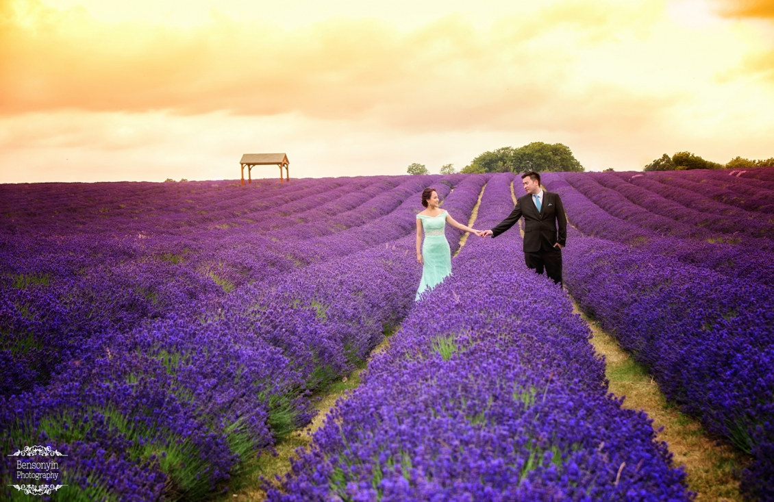 london_lavender_prewedding