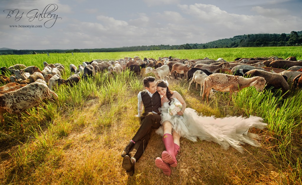 BENSONYIN WEDDING Gerard and Louise3