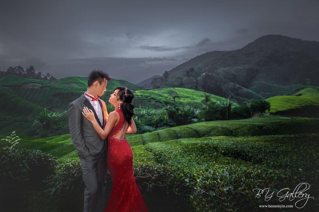 cameron highland pre-wedding