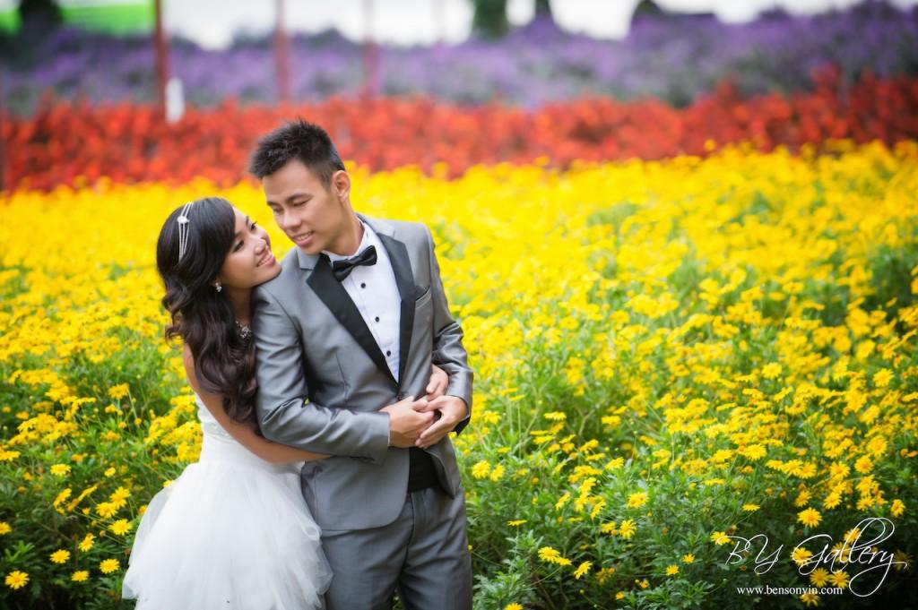 cameron pre-wedding lavender